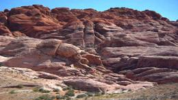 Examine petroglyphs on the Red Rock Canyon Tour - July 2011