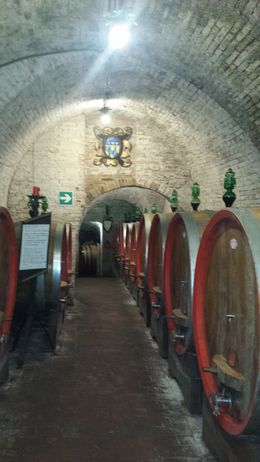 This was the oldest cellar in the world at 2500 years old , Dawn G - September 2015