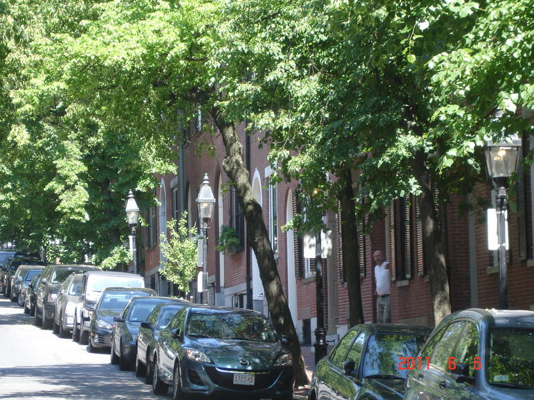 Tree-lined streets in Beacon Hills - Boston