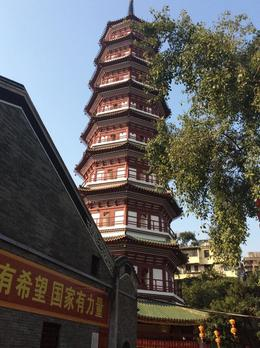 the temple's famous pagoda , Christina M - February 2017