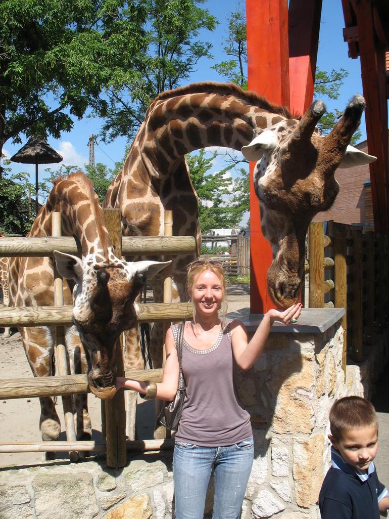 Budapest Zoo -