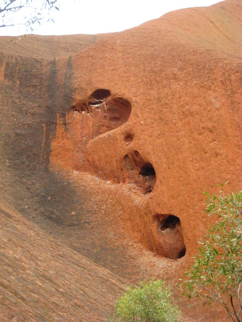 Uluru Mala Walk - Ayers Rock