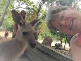 We got to walk around with the Kangaroos- looks like the kangaroo took the photo! , Karen G - February 2016