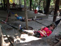 Time for a rest after a big lunch , Janine S - May 2015