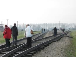 These rail tracks continued from the gate of Auschwitz Camp II at Birkenau and splitted in two directions, going to two different Gas Chambers previously located at far end of the photo. The Gas... - December 2009