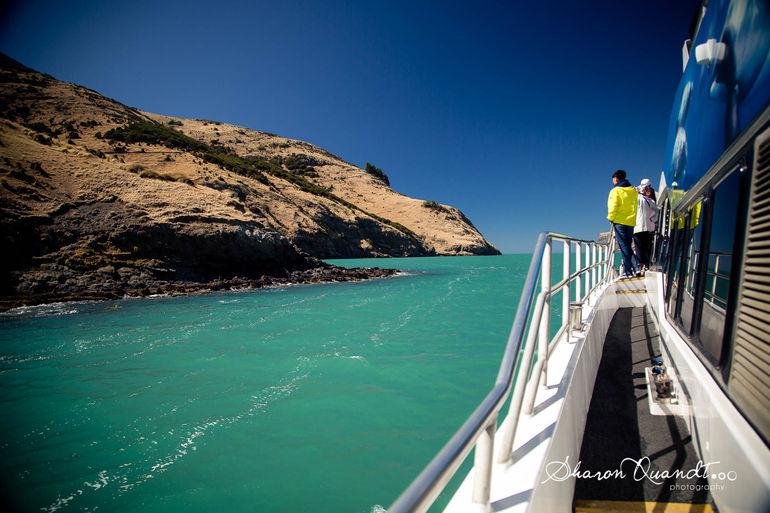 Tauranga Shore Excursion: Rotorua Highlights
