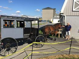 Buggy in Amish country , Marina R - October 2016