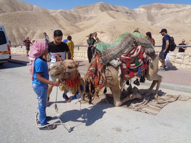 Bethlehem, Jericho & Jordan River Tour from Tel Aviv