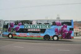 Det var to etasjers busser som reiste til Keukenhof , Line J - May 2015