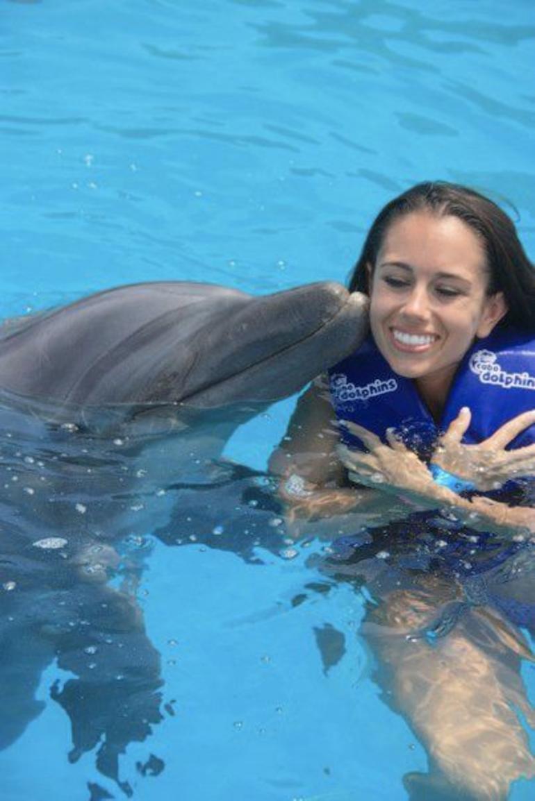 Dolphin Experience - Los Cabos