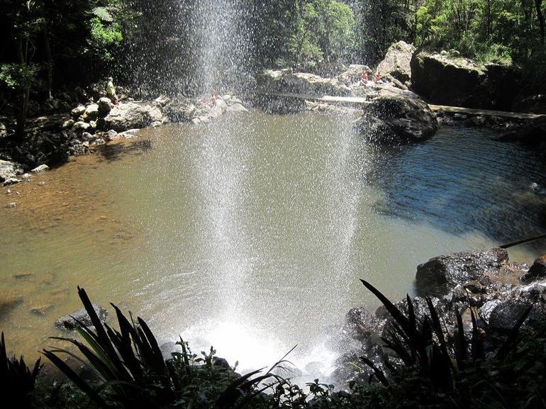 Paradise! - Brisbane
