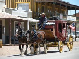 Keeping it old school...horse and buggy, charley - June 2012