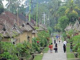 Balinese village , Anju J - April 2015