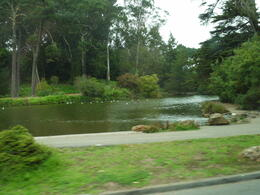 Presidio Park , Chloejay - October 2011