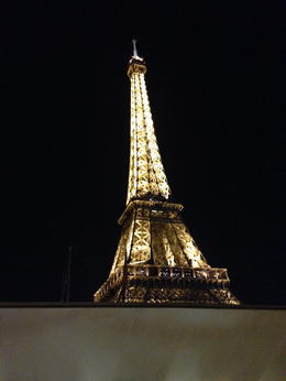 The Eiffel Tower , Lawrence S - January 2015