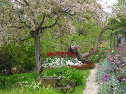Gardens at Giverny - May 2010