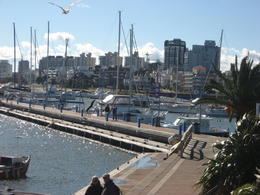 A beautiful morning on the boardwalk in Punta del Este., Bandit - August 2012