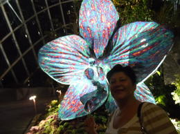 Evening Gardens by the bay , DANA H - March 2017