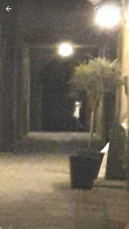 zoomed in photo of possible Lady in White! it was black down that street... , Calandra R - June 2017