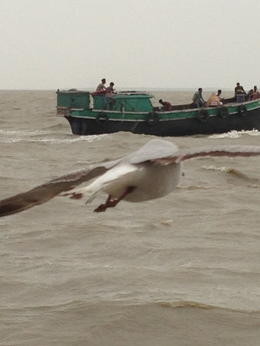 Ferry ride to Ganga Sagar , Lonia - June 2013