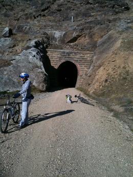 Otago Central Rail Trail Bike Tour - November 2013
