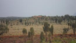 desert? )) , Cherny_1612 - December 2011
