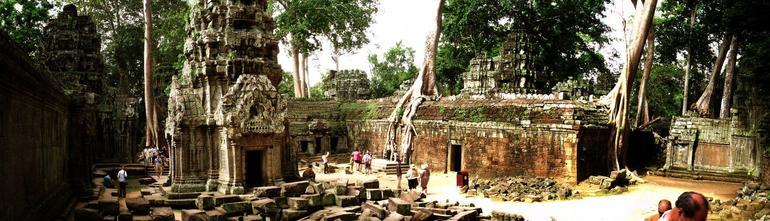 Ta Prom temple - Siem Reap