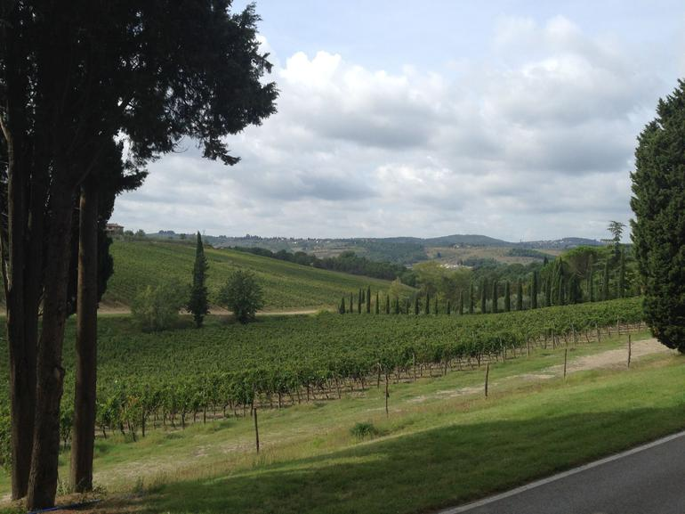 Tuscany Bike or E-Bike Tour from Florence with Tuscan lunch photo 9