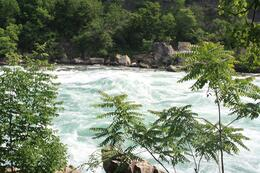 A fifth of the world's fresh water flows over the Falls!, Richard A - August 2009