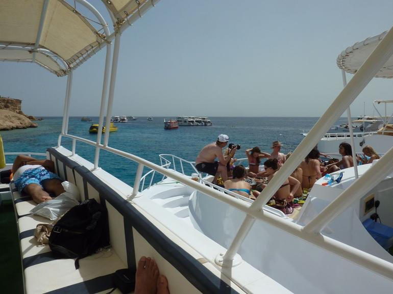 Snokeling Trip - Sharm el Sheikh