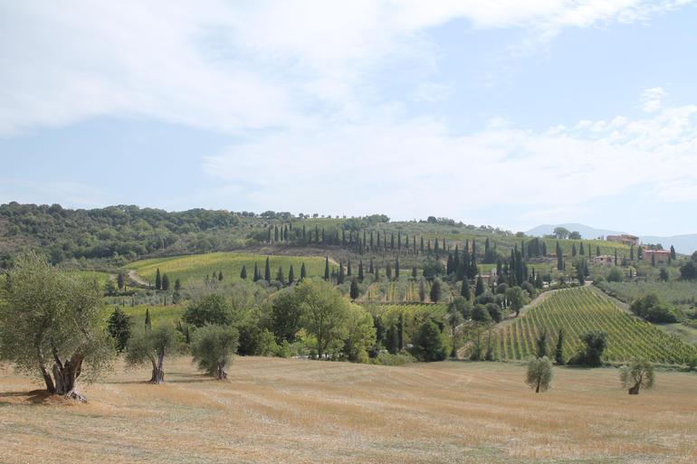 Tuscan view - Rome