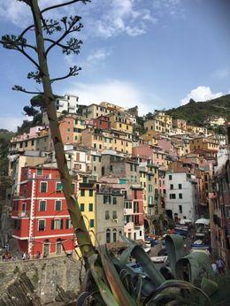 Such amazing picturesque villages in La Cinque Terre , Jacqueline V - October 2015