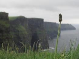 Beautiful Cliffs. Simply amazing views. , Nikki H - July 2012