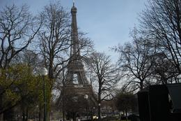The Eiffel Tower through the trees - April 2010