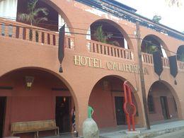 Hotel California, Cat - November 2014