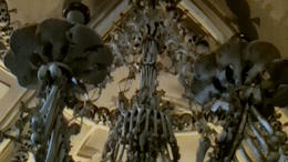 The incredible ossuaries! - March 2012