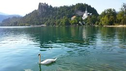 Wandering around the shores of Lake Bled. , Chrissy - September 2015