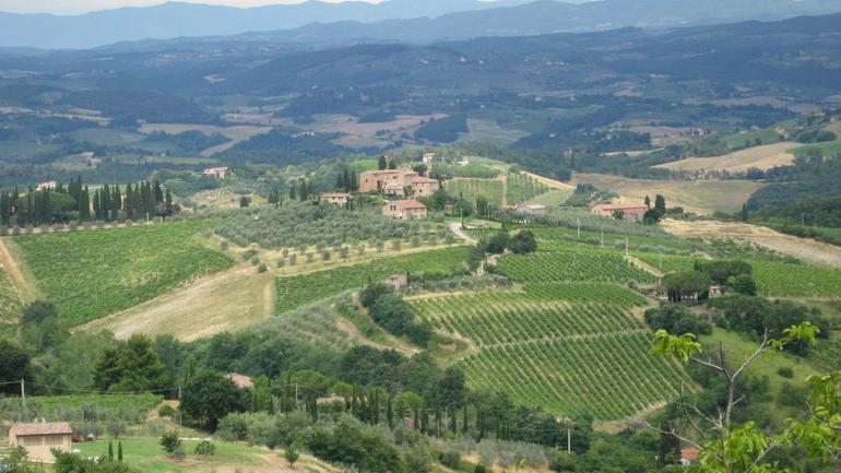 Near Siena - Florence