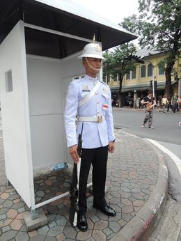 Royal Palace guard. , Peter L - November 2016