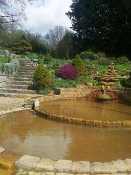 a natural iron-ore rich spring fills this pool - so peaceful , Kaye M - May 2013