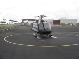 Our helicopter!, Bandit - February 2011