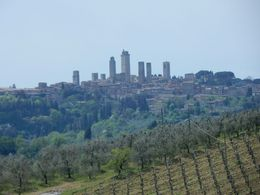 View of San Gimignano in the distance from nearby vineyard. , steven c - May 2015