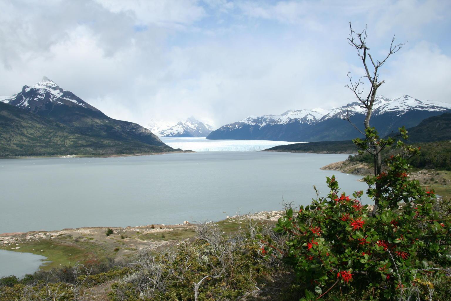 MÁS FOTOS, Full-Day Tour to the Perito Moreno Glacier including Boat Safari
