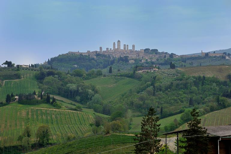 A view from the Fattoria Poggio Alloro wineyard to San Gimignano -