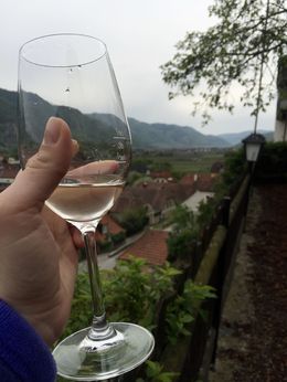 Had a great time on this tour tasting several different wines from the Wachau Valley with very well informed tour guides , kaylaamenta - April 2016