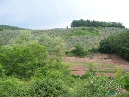 A view of the Toscana fields. , Marise G - June 2011