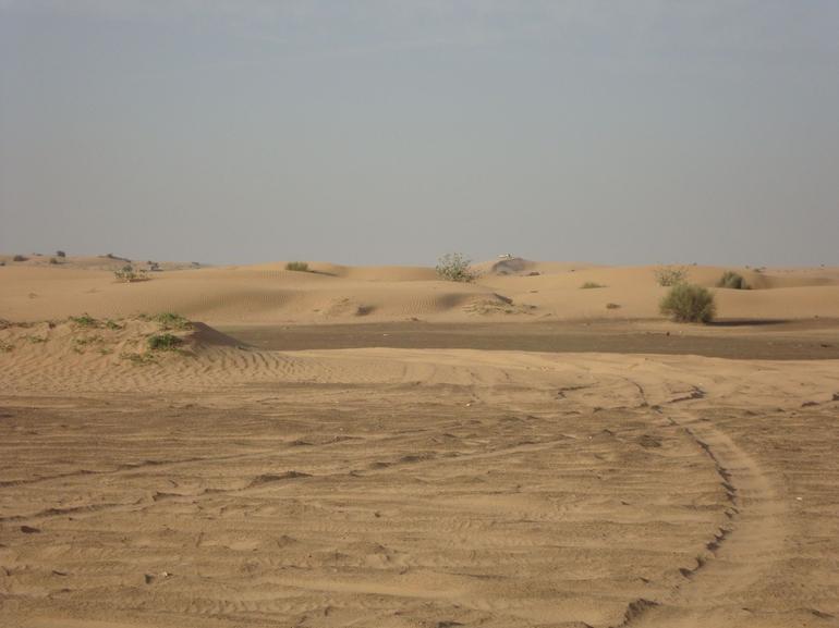 Dubai Desert - Dubai