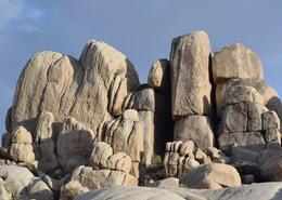 Jumbo Rocks - March 2013