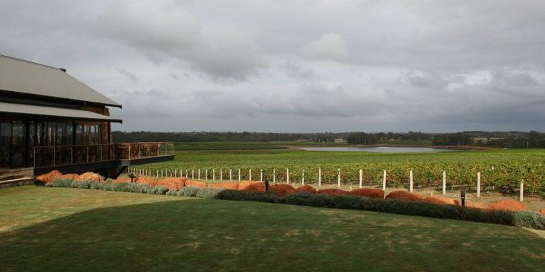 Watershed Vineyard - Perth
