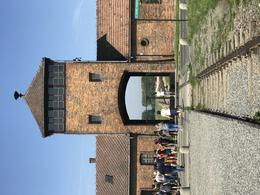 Probably the most iconic feature of Auchwitz. It just sends shivers down my , Chris W - November 2017